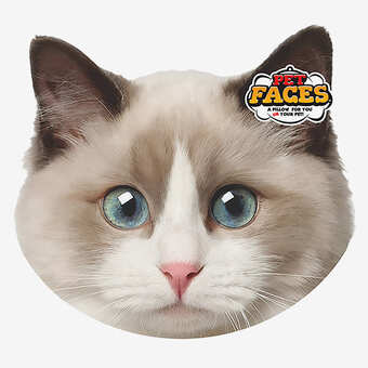 Pet Faces Ragdoll Cat Horze