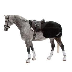 nierendecken f r ihr pferd pferdedecken horze. Black Bedroom Furniture Sets. Home Design Ideas