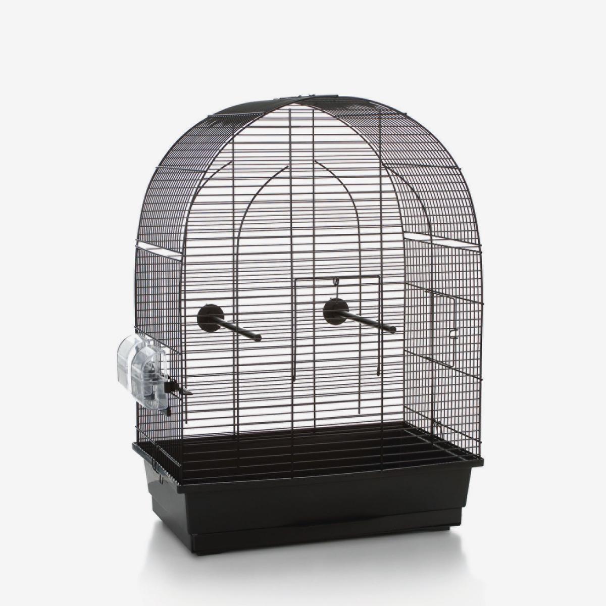 beeztees vogelk fig lucie fanette horze. Black Bedroom Furniture Sets. Home Design Ideas