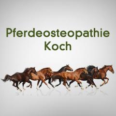 Pferdeosteopathie Koch
